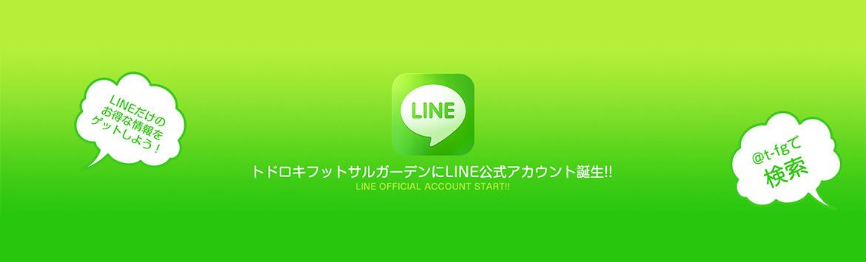 topimg_line